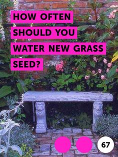 Water new grass seed at least once per day so that the soil stays evenly moist to a depth of 1 to 2 inches, for the first 30 after sowing.
