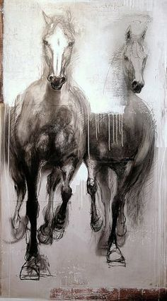 galloping horse rough sketches - Google Search
