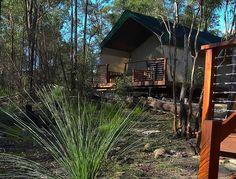 Murphys Creek Hideaway Luxury Safari Tents
