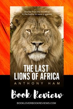 Anthony Ham's The Last Lions of Africa is a fascinating and thought-provoking read about these majestic creatures in peril. A book that would make an excellent Father's Day gift. True Crime, Lion Species, Lion Africa, Adventure Novels, Film Music Books, Africa Travel, Book Reviews, Nonfiction Books, Love Book