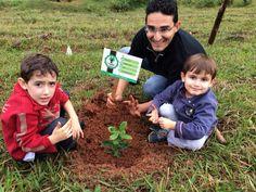 Família planta uma árvore por dia