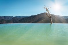 """Hierve el Agua (Spanish for """"the water boils""""), Oaxaca state, Mexico (1024 x 683) (OC) - #funny #lol #viralvids #funnypics #EarthPorn more at: http://www.smellifish.com"""