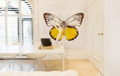 Butterfly | Summer 2015 | Arsenaal Naarden | Monique des Bouvrie Styling & Interior Design