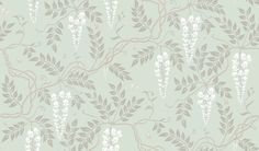 Egerton (100/9044) - Cole & Son Wallpapers - Another popular design, Egerton has been reintroduced in new colourings including the elegant design of a trailing Wisteria tree. Shown here in duckegg. Other colourways are available. Please request a sample for a true colour match.