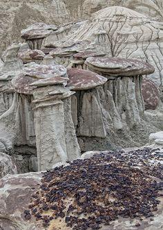Ah-Shi-Sle-Pah Wilderness Study Area, New Mexico