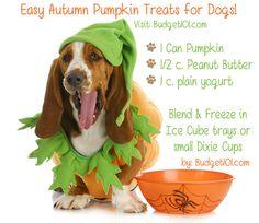 Fall Pumpkin Treat for Pets