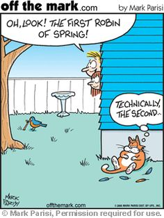 Cat Cartoons by award-winning cartoonist Mark Parisi. Affordable & funny comics that are great for presentations, websites, social media, publications, gifts and more. Discounts when you buy 3 or more. I Love Cats, Cute Cats, Funny Cats, Funny Animals, Cat Jokes, Funny Jokes, Hilarious, Cat Humour, Funny Cartoons