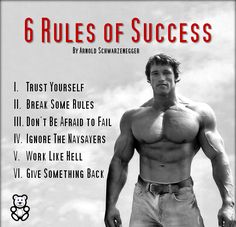Success Quotes from Arnold Schwarzenegger The post Famous and Inspiring Arnold Schwarzenegger Quotes appeared first on Best Pins for Yours - Life Quotes Arnold Schwarzenegger Zitate, Arnold Schwarzenegger Bodybuilding, Arnold Schwarzenegger Workout, Bodybuilding Motivation Quotes, Bodybuilding Workouts, Fitness Motivation Quotes, Bodybuilding Training, Daily Motivation, Bodybuilder