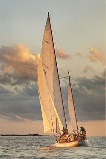 sailing Cape cod.jpg | by betty wiley