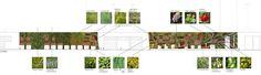 La fachada vegetal tiene una superficie total de 1492m2, de los cuales 1000m2 son jardín vertical del sistema f+p hidropónico y 492m2 son de...