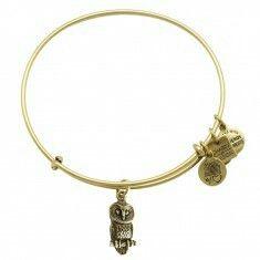 Owl bracelet by Alex and ani