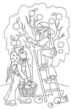 Tipss und Vorlagen autumn coloring pages autumn coloring pages for kids autumn coloring sheets for kids Fall Coloring Sheets, Apple Coloring Pages, Tree Coloring Page, Colouring Pages, Coloring Pages For Kids, Coloring Books, Art Drawings For Kids, Drawing For Kids, Free Printable Coloring Pages