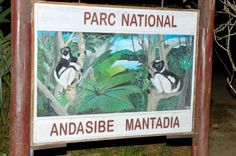 Andasibe-Mantadia National Park (Reserve of Perinet), Andasibe