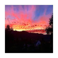 ein wunderschöner Abendhimmel über Adliswil #lebeninadliswil #livinginadliswil #sihltal #abendrot #sonnenuntergang #sunset #redsky #himmel… Northern Lights, Celestial, Sunset, Nature, Travel, Outdoor, Instagram, Life, Nice Asses