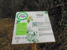 Cuneo e dintorni: Parole di Legno al Parco Fluviale di Cuneo, percor...