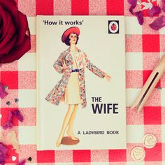 How It Works The Husband  Ladybird Books For GrownUps