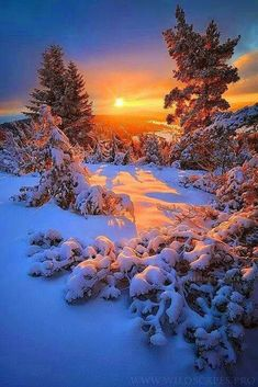I love snow, i love winter, winter time, winter sunset, beautiful landscapes Winter Magic, Winter Snow, Winter Time, Landscape Photography, Nature Photography, Winter Photography, Winter Scenery, Winter Sunset, All Nature