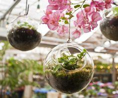Terrain Glass Hanging Orb
