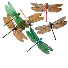 Magnet mix, acrylic and acetate, mixed colors, 5x3-1/4 inch dragonfly. Sold per pkg of 6.