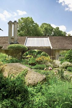 Ogród po angielsku #ogrodangielski #ogrod #roze