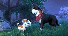 Max Meets Rooster in New The Secret Life of Pets 2 Clip Jenny Slate, Harrison Ford, Pets Movie, Movie Tv, Hd Movies, Woody Y Buzz, Mckenna Grace, Minion S, Patrick Wilson