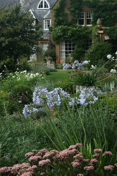 Coton Manor Garden, Northamptonshire #garden