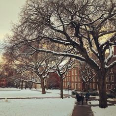 From our friends at Brown  @brownu - College Hill in December   by @laura.haskin #BrownUniversity #goviewyou