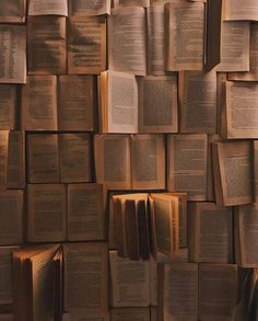 Pin by dreamer neem on Books Book wallpaper Book aesthetic Brown aesthetic