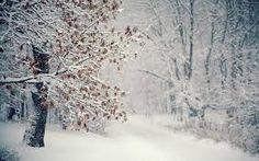 Картинки по запросу зима дерево