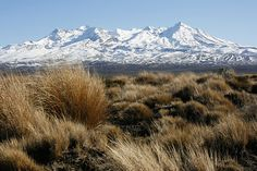 Mt Ruapehu from the Desert Road - a stunning view of a magnificent mountain!!