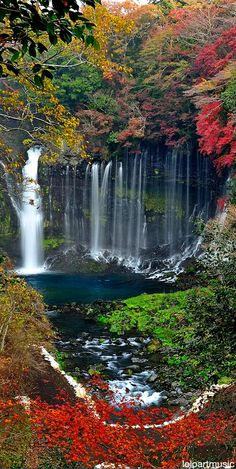 La catarata Shiraito se encuentra en Fujinomiya, Prefectura de Shizuoka, cerca del Monte Fuji, en Japón. Es parte del Parque Nacional Fuji-Hakone-Izu y ha sido protegida desde 1936 como Monumento Natural Japonés.