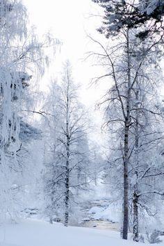 Laponie   Lapland