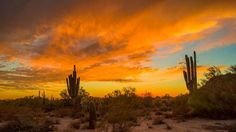 AZ Sunset East Mesa  By Casey Stanford