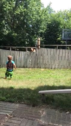 Play with a neighbor's dog The Effective Pictures We Offer You About Cutest Baby Animals so cute A q Cute Funny Animals, Cute Baby Animals, Funny Dogs, Animals And Pets, Funny Dog Videos, Cute Animal Videos, Funny Animal Pictures, Funny Animal Gifs, Cute Puppies