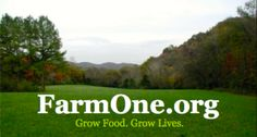 Our mission here at FarmOne.org is to grow food and grow lives. We are serving the Nashville area through agricultural education, growing vegetables, herbs and fruits and distributing it to those in need in our community. We grow and harvest our produce using sustainable growing methods with no use of synthetic chemicals. Volunteer opportunities are available! We greatly need and appreciate your support. Good things to come in 2013! Please visit www.FarmOne.org for more information. @Kevin…