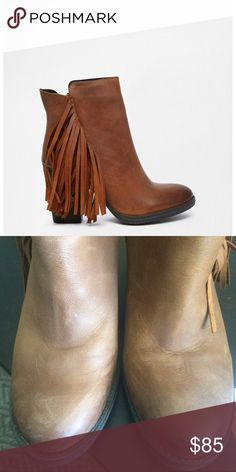"""Woodstock Steve Madden booties Cognac Woodstock fringe booties. Real leather, worn 2-3 times. Some wear on the front(shown in second pic)goes along with the botties """"worn down"""" look. Super comfortable Steve Madden Shoes Ankle Boots & Booties"""