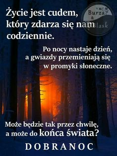 Good Night All, Magic Day, So True, Humor, Quotes, Poster, Polish, Quotations, Humour