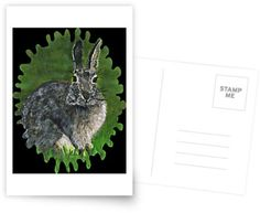 Sweet painted cottontail, poses happily in the long green grass. • Millions of unique designs by independent artists. Find your thing.