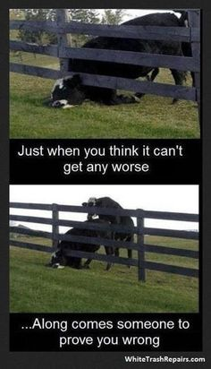 Cant get any worse. -