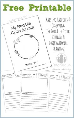 Free Printable Frog Life Cycle Journal | Observational drawing and record keeping while raising frog spawn, tadpoles and froglets.