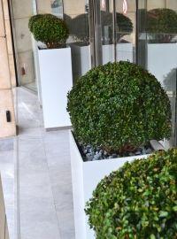 jardini re haute rectangulaire avec motif en gravure finition inox peinture blanc laqu e. Black Bedroom Furniture Sets. Home Design Ideas
