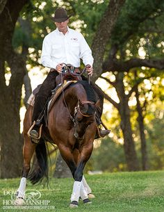 Downunder Horsemanship   Training Tip: Keep Your Horse Guessing