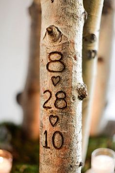 If you're having a rustic-style wedding, carve your initials into branches. great idea and photo