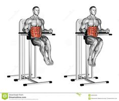 Exercising. Oblique Raises On Parallel Bars Stock Illustration - Image: 66625299