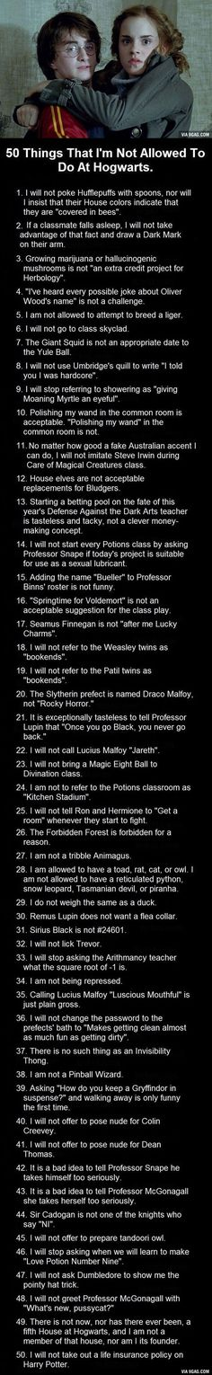 50 Things I'm Not Allowed To Do At Hogwarts. These Are Bloody Brilliant.: