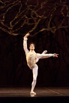 Evan McKie in The Sleeping Beauty. Photo by Aleksandar Antonijevic.