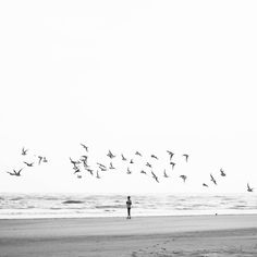 """"""": freeing dreams :"""" Dreams, Celestial, Instagram Posts, Quotes, Photography, Outdoor, Quotations, Outdoors, Photograph"""