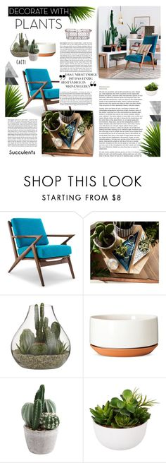 """""""Planters & Plants 🌱"""" by cara-mia-mon-cher ❤ liked on Polyvore featuring interior, interiors, interior design, home, home decor, interior decorating, Joybird, Room Essentials, Modern by Dwell Magazine and John Lewis"""