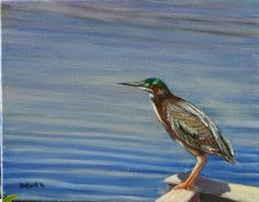 "Green Heron, 2016, oil on canvas, 11"" x 14"" (From a photo I took at Black Point Wildlife Refuge, Merritt Island, FL)"