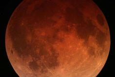 Wat is een maansverduistering, en wanneer kunnen we de volgende zien? | Wetenschap in Beeld